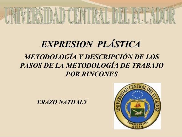 EXPRESION PLÁSTICA METODOLOGÍA Y DESCRIPCIÓN DE LOSPASOS DE LA METODOLOGÍA DE TRABAJO            POR RINCONES    ERAZO NAT...