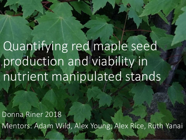 HB 2018 - Quantifying red maple seed production