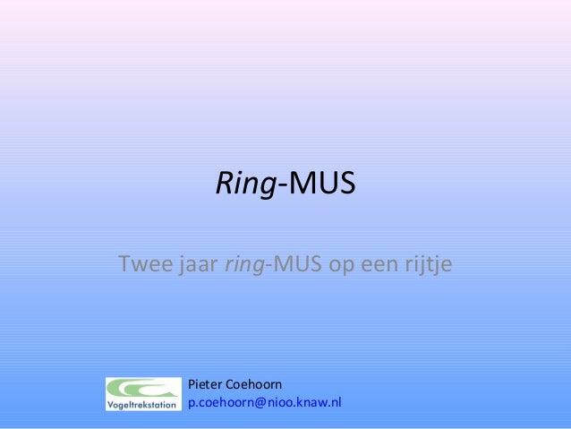 Ring-MUSTwee jaar ring-MUS op een rijtje      Pieter Coehoorn      p.coehoorn@nioo.knaw.nl