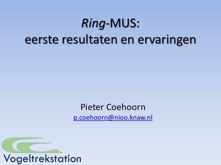 Ring-MUS:eerste resultaten en ervaringen          Pieter Coehoorn        p.coehoorn@nioo.knaw.nl