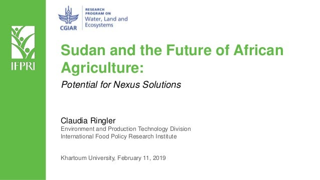 Sudan and the Future of African Agriculture: Claudia Ringler Environment and Production Technology Division International ...
