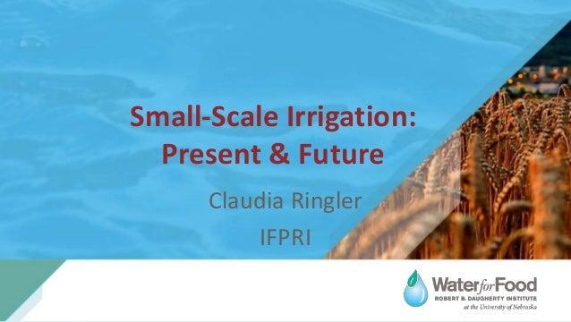 Small-Scale Irrigation: Present & Future Claudia Ringler IFPRI