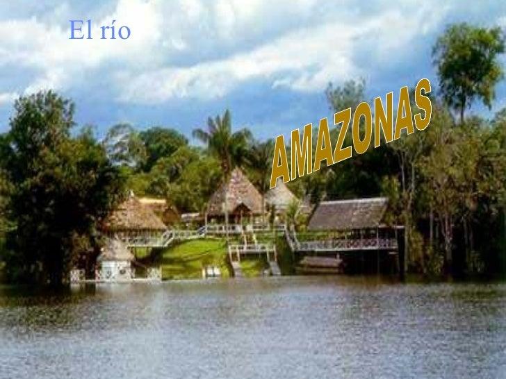 AMAZONAS AMAZONAS El río