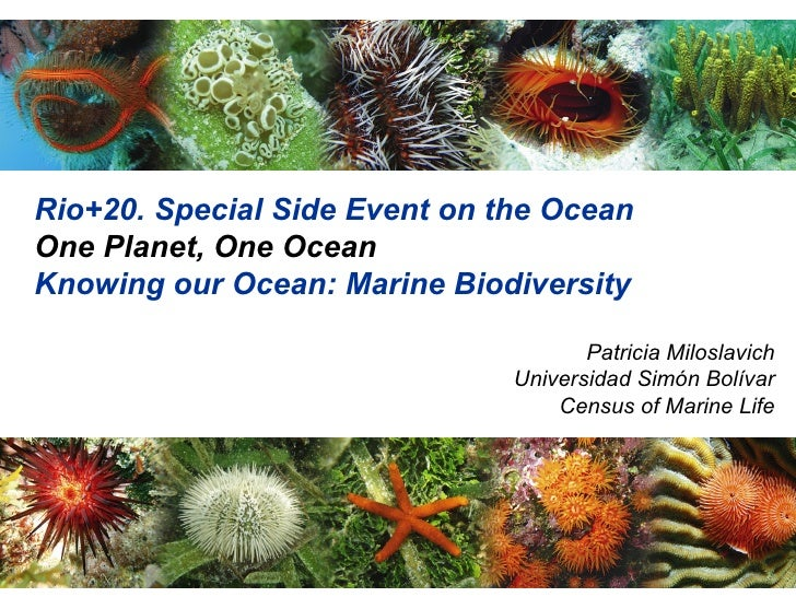 Rio+20. Special Side Event on the OceanOne Planet, One OceanKnowing our Ocean: Marine Biodiversity                        ...