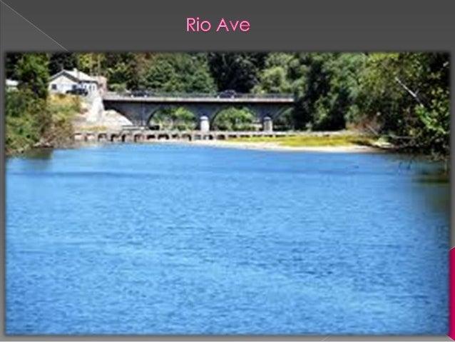 O   rio ave passa por 7 concelhos, Vieira              do Minho, Póvoa de    Lanhoso, Guimarães, Famalicão, S.         Ti...
