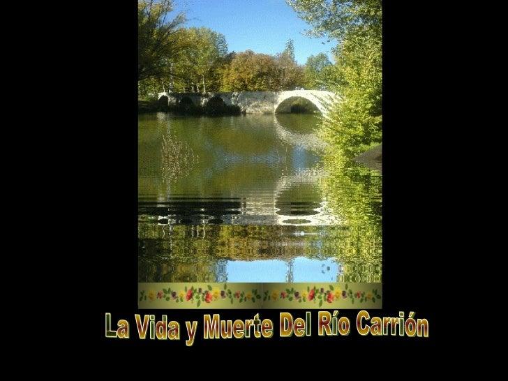 La Vida y Muerte Del Río Carrión
