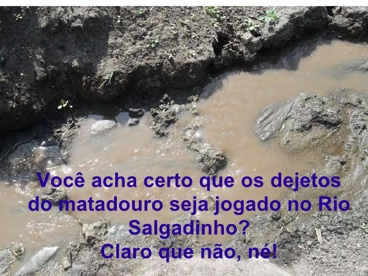 Você acha certo que os dejetos do matadouro seja jogado no Rio Salgadinho? Claro que não, né!