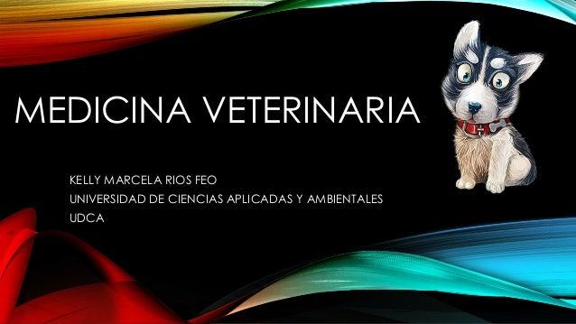 MEDICINA VETERINARIA KELLY MARCELA RIOS FEO UNIVERSIDAD DE CIENCIAS APLICADAS Y AMBIENTALES UDCA