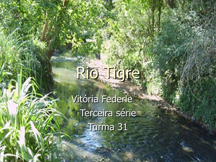 Rio Tigre Vitória Federle  Terceira série Turma 31