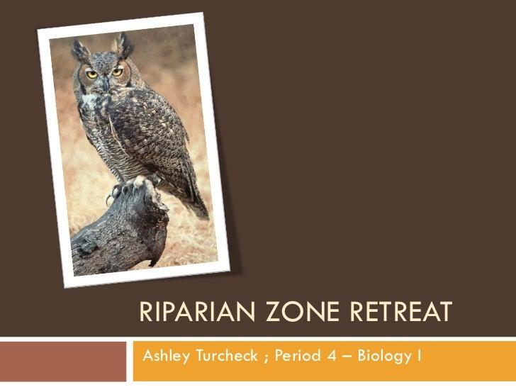 RIPARIAN ZONE RETREAT Ashley Turcheck ; Period 4 – Biology I