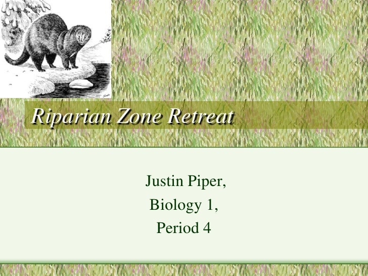 Riparian Zone Retreat<br /> Justin Piper, <br />Biology 1, <br />Period 4<br />