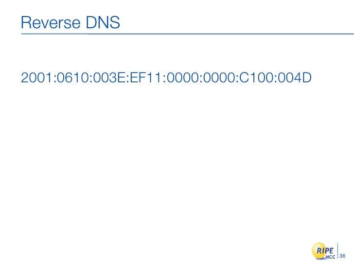 Reverse DNS   2001:0610:003E:EF11:0000:0000:C100:004D                                               36
