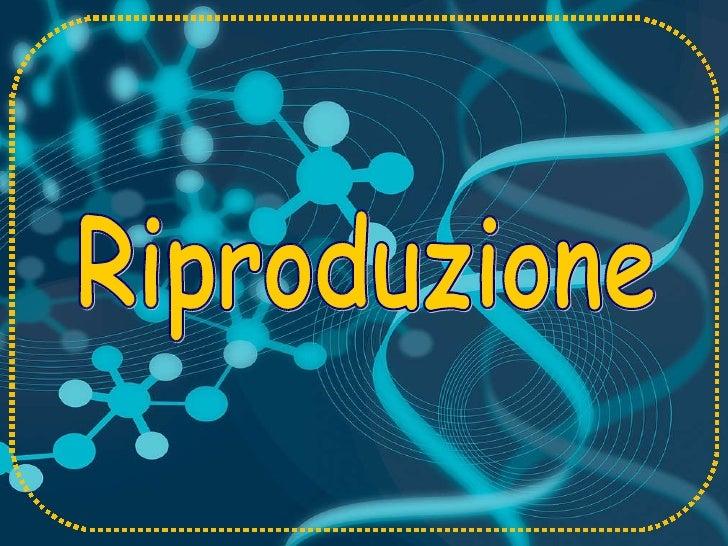 shop Rubber Nanocomposites: Preparation,