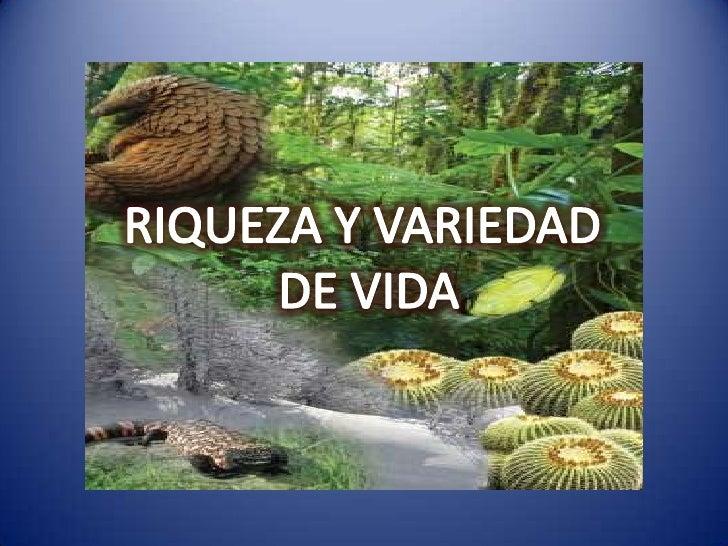 RIQUEZA Y VARIEDAD <br />DE VIDA<br />