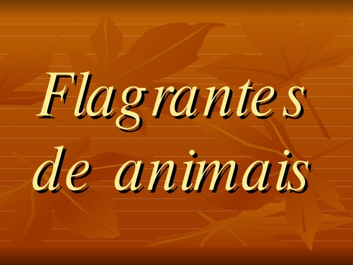 Flag rante s de animais