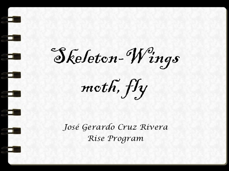 Skeleton-Wings moth, fly José Gerardo Cruz Rivera Rise Program