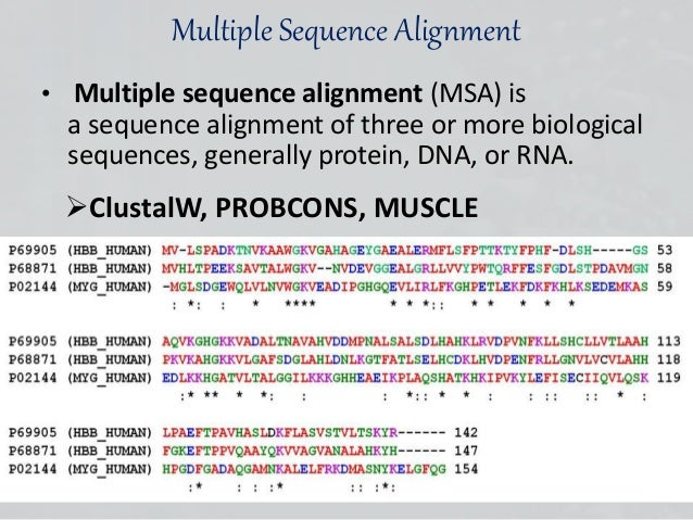 Blast search nucleotide