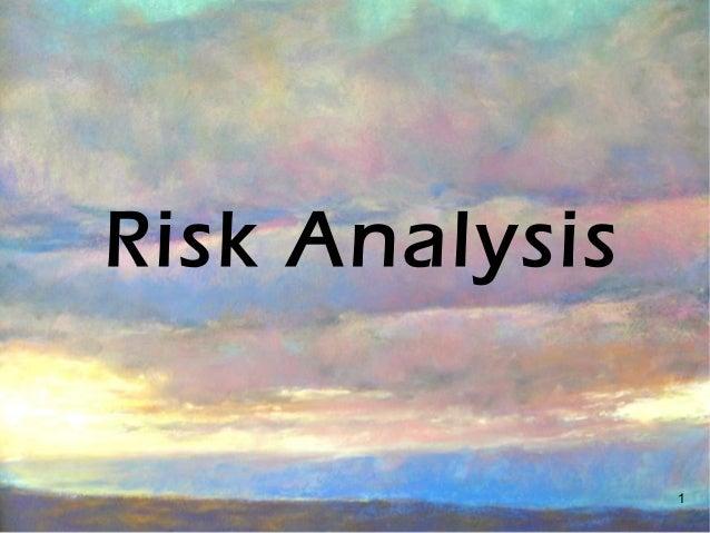 1 Risk Analysis