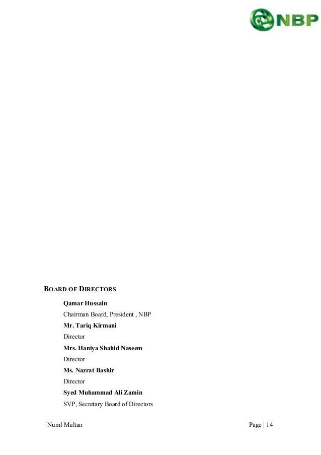 essay with nbp monetary analysis
