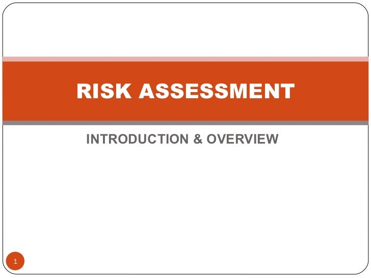 INTRODUCTION & OVERVIEW RISK ASSESSMENT