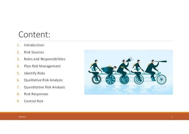 Content: 1. Introduction 2. Risk Sources 3. Roles and Responsibilities 4. Plan Risk Management 5. Identify Risks 6. Qualit...