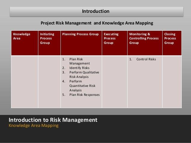 Risk management plan assignment purpose