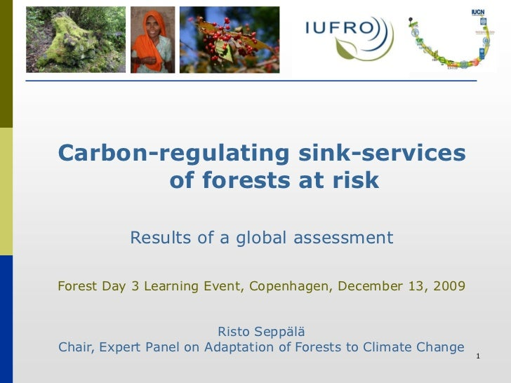 Carbon-regulating sink-services         of forests at risk            Results of a global assessment  Forest Day 3 Learnin...