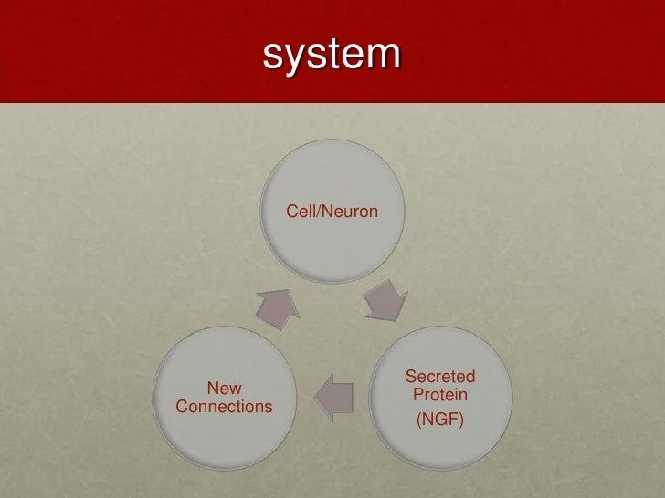 system<br />
