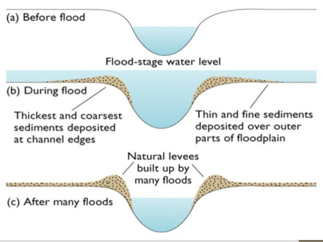 River 2 waterfall plungepools floodplain n levees formation of floodplain and levee ccuart