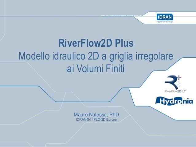 RiverFlow2D Plus Modello idraulico 2D a griglia irregolare ai Volumi Finiti  Mauro Nalesso, PhD IDRAN Srl / FLO-2D Europe