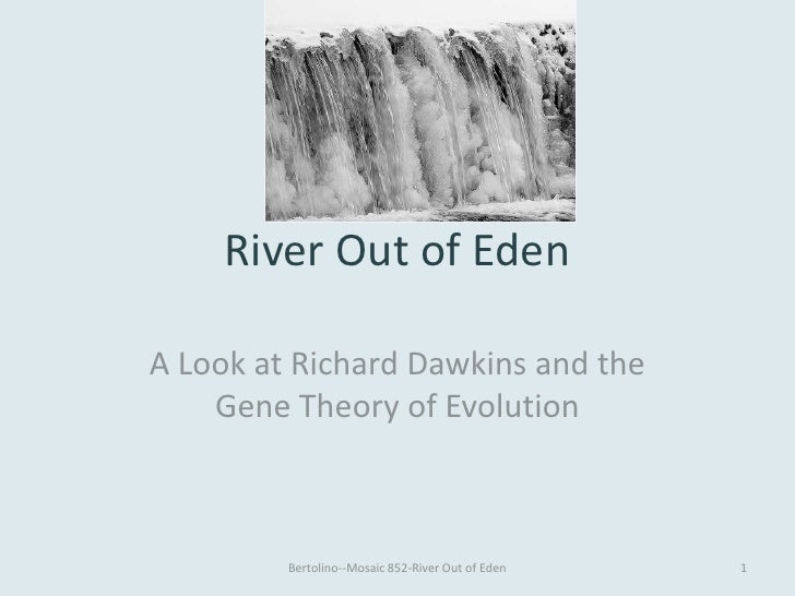 River Out of EdenA Look at Richard Dawkins and the    Gene Theory of Evolution         Bertolino--Mosaic 852-River Out of ...