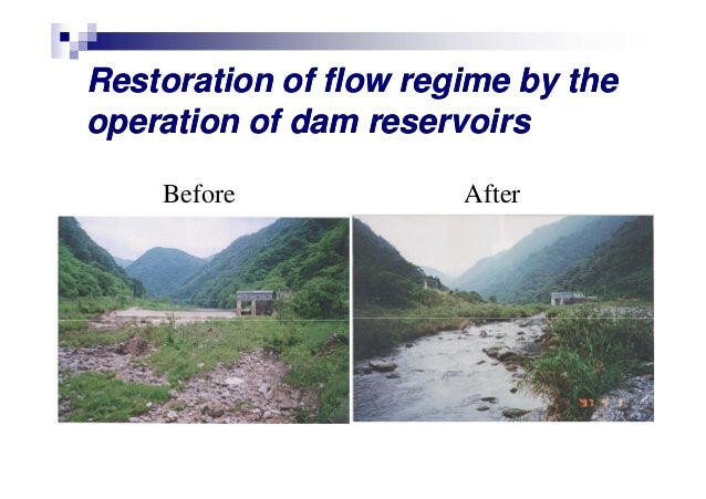 River Restoration In Japan Keigo Nakamura