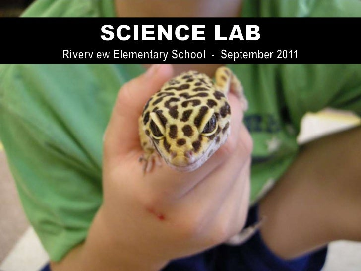 Riverview Elementary has established a Science Labfor students, a project which was aided by a grant from      the Farming...