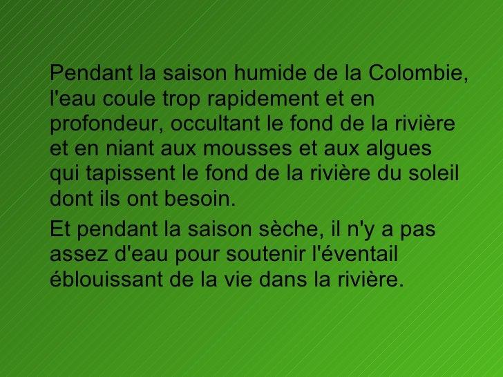 <ul><li>Pendant la saison humide de la Colombie, l'eau coule trop rapidement et en profondeur, occultant le fond de la riv...