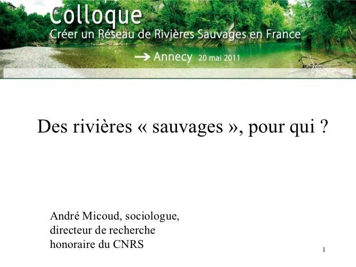 Des rivières «sauvages», pour qui ? André Micoud, sociologue, directeur de recherche honoraire du CNRS
