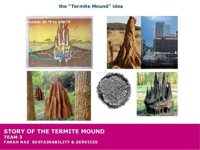 "the ""Termite Mound"" idea         Outside 35 ºF to 100 ºF                         87 ºFSTORY OF THE TERMITE MOUNDTEAM 3FARA..."