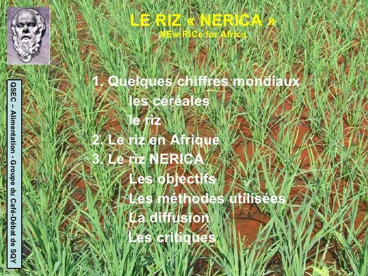 LE RIZ « NERICA » NEw RICe for Africa <ul><li>1. Quelques chiffres mondiaux </li></ul><ul><li>les céréales </li></ul><ul><...