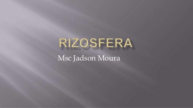 Msc Jadson Moura