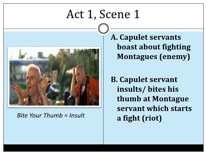 an overview of romeo and juliet Romeo and juliet summary & study guide includes detailed chapter summaries and analysis, quotes, character descriptions, themes, and more.