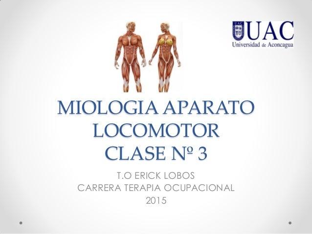 MIOLOGIA APARATO LOCOMOTOR CLASE Nº 3 T.O ERICK LOBOS CARRERA TERAPIA OCUPACIONAL 2015
