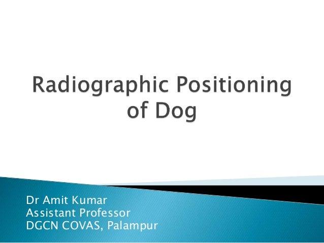 Dr Amit Kumar Assistant Professor DGCN COVAS, Palampur