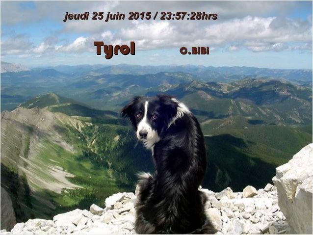 TyrolTyrol C.BiBiC.BiBi jeudi 25 juin 2015jeudi 25 juin 2015 // 23:57:2823:57:28hrshrs