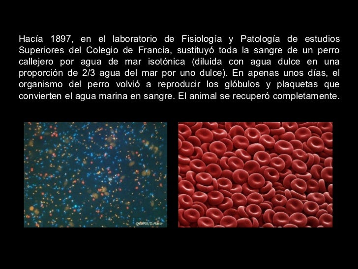 Hacía 1897, en el laboratorio de Fisiología y Patología de estudios Superiores del Colegio de Francia, sustituyó toda la s...