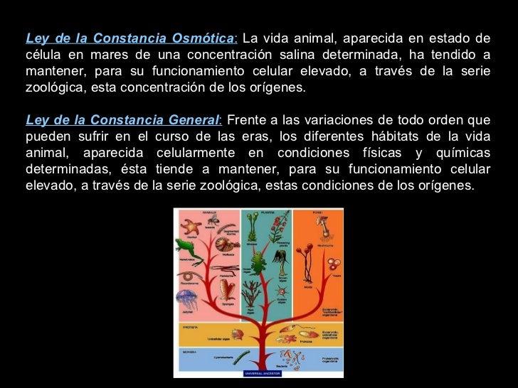 Ley de la Constancia Osmótica :  La vida animal, aparecida en estado de célula en mares de una concentración salina determ...