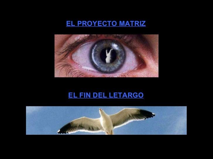 EL FIN DEL LETARGO EL PROYECTO MATRIZ