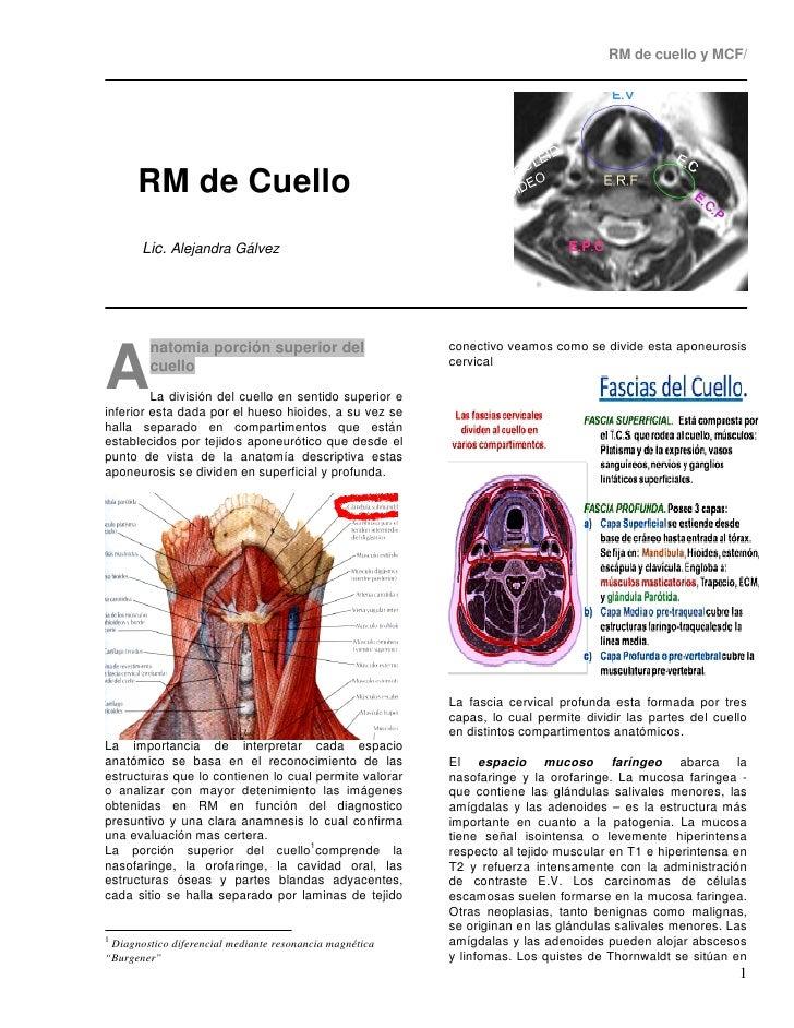 RM DE CUELLO