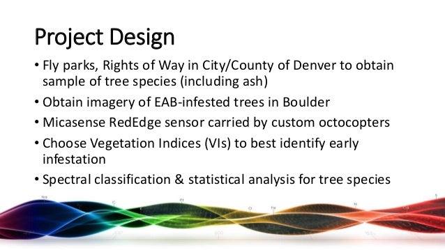 Emerald Ash Borer Identification using Drones