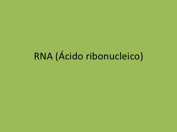 RNA (Ácido ribonucleico)