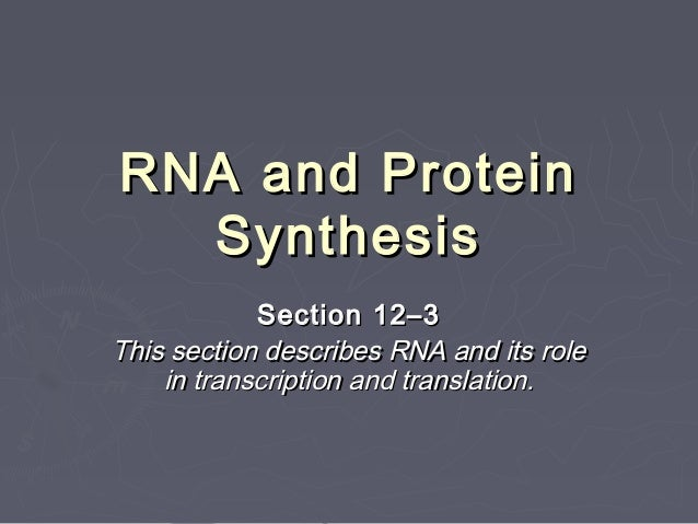 RNA and Protein  Synthesis            Section 12–3This section describes RNA and its role    in transcription and translat...