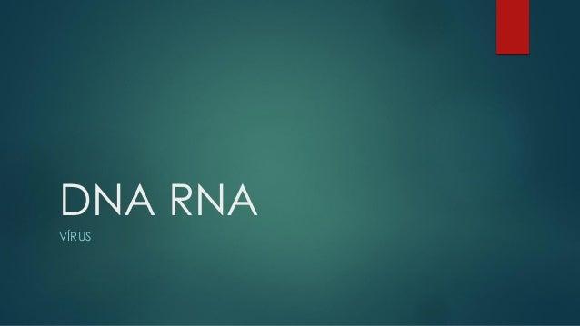 DNA RNA  VÍRUS